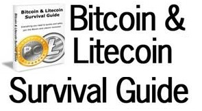 Bitcoin Survival